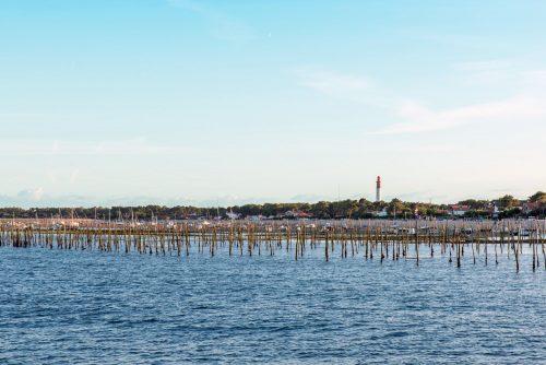 La découverte des parcs à huîtres lors du Grand Tour de l'Île aux Oiseaux