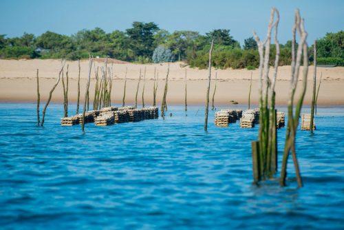 Parcs à huîtres sur le Bassin d'Arcachon