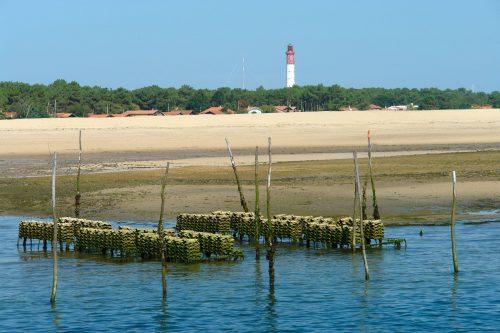 Les parcs à huîtres devant le phare du Cap Ferret