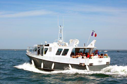 """""""Arguin"""" vedette de la flotte de l'Union des Bateliers Arcachonnais"""